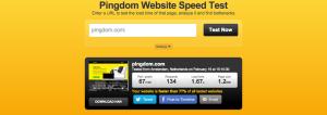 Test your custom wordpress website speed