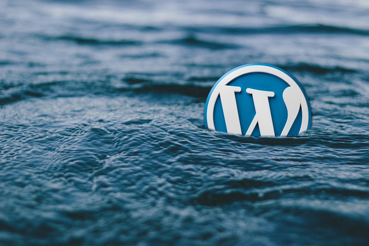 wordpress-mistakes-water